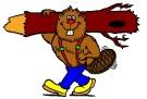 Beaver 1 (edit)